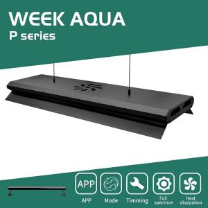 Đèn thủy sinh WEEK P Series Pro